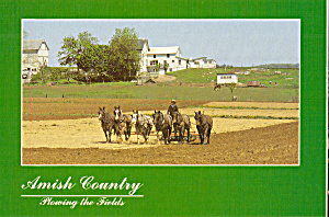 Amish Farmer Plowing with Six Horse Team cs7090 (Image1)