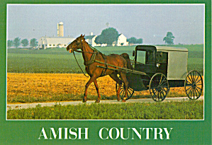 Amish Farm and Horse  and Buggy cs7145 (Image1)