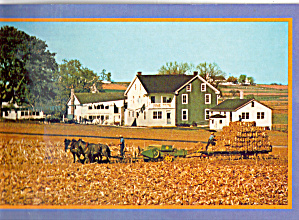 Amish Farmers Harvest of Corn Fodder cs7146 (Image1)