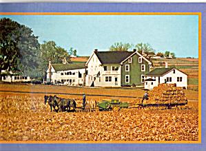 Amish Farmers Harvest of Corn Fodder cs7146 (Image1)
