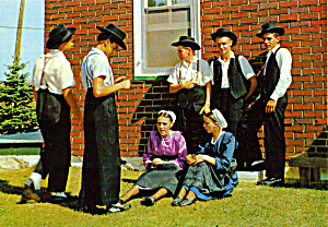 Group Of Young Amish Boys And Girls Cs7151