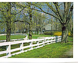 Kentucky Horse Park Lexington KY cs7271 (Image1)