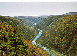 Grand Canyon PA in Autumn Splendor Postcard cs7318 (Image1)