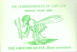Commonwealth of Cape Cod  Official State Bird cs7435 (Image1)