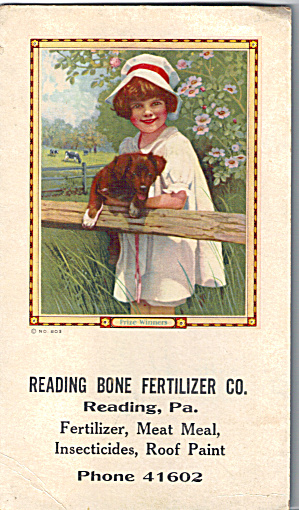 Reading Bone Fertilizier Co,reading, Pa Ink Blotter