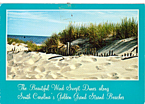 Myrtle Beach SC Wind Swept Dunes along the Grands Strand cs7616 (Image1)