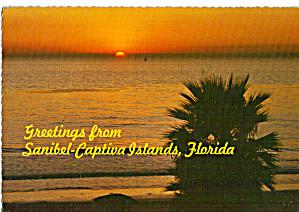 Greetings from Sanibel Captiva Islands Florida cs7661 (Image1)