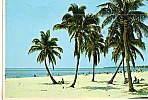 Beach at Ft Lauderdale Florida cs7663 (Image1)