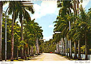 Avenue Of Palms Mcgregor Blvd Ft Myers Florida Cs7677