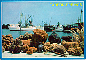 Sponges on The Docks Tarpon Springs Florida cs7696 (Image1)