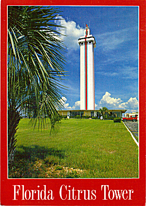 Florida Citrus Tower Claremont Florida Postcard cs7699 (Image1)