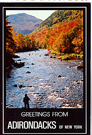 Stream Scene in The Adirondack Park New York cs7740 (Image1)
