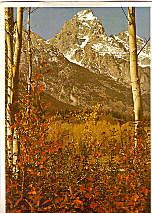 Grand Teton National Park, Autumn in the Tetons (Image1)