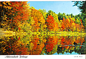 New York State Forest Preseve in Autumn Color, Adirondacks, New York (Image1)