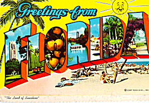 Big Letter Greetings from Florida Postcard cs7862 (Image1)