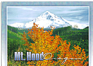Snow Capped Mt Hood Oregon Cs7878