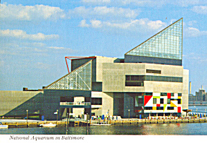 Baltimore Maryland National Aquarium Cs7942