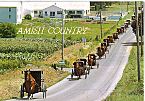 Amish Buggies in Line on Highway cs8039 (Image1)