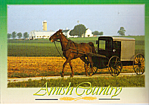 Amish Farm Scene with Horse and Buggy cs8081 (Image1)