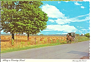 Amish Horse and Buggy in Indiana Postcard cs8253 (Image1)