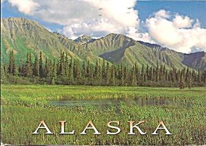 Alaska Wilderness Postcard cs8291 (Image1)