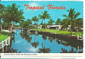 Coconut Palms Border Waterway Homes In Florida Cs8361