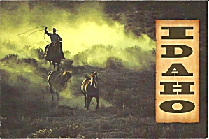 Idaho Cowboy Driving Wild Horses cs8374 (Image1)