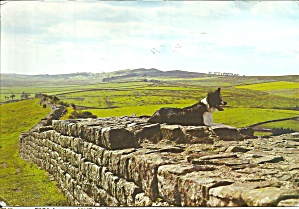 On Hadrian S Wall, Northern Great Britain