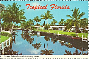 Florida Coconut Palms and Waterway Houses cs8544 (Image1)
