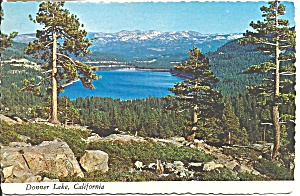 Donner Lake California Shore Lined with Pine and Fir cs9050 (Image1)