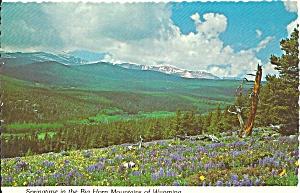 Big Horn Mountains Wyoming cs9061 (Image1)