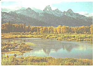 Grand Teton National Park Black Tail Pond Wy Cs9098