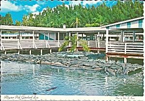 Godwin s Gatorland Zoo Orlando Kissimme FL cs9191 (Image1)