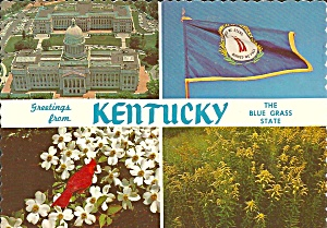Kentucky State Flag, Bird Flowers and Capitol cs9199 (Image1)