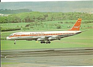 T A E Spanish Airlines DC-8-32 EC-CCN   cs9433 (Image1)