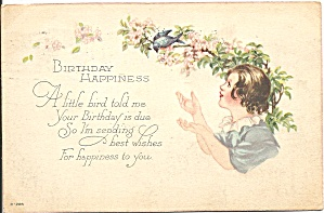 Birthday Happiness Postcard cs9589 1925 (Image1)