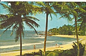 Dorado Beach Puerto Rico cs9651 (Image1)