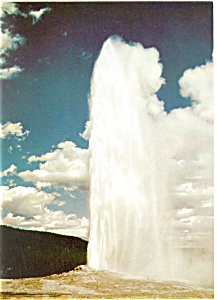 Old Faithful at Yellowstone Postcard (Image1)