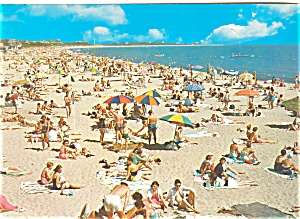 Beach And Bathers Postcard Lp0126