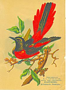 Yates Clothing Store Philadelphia Victorian Trade Card lp0292 (Image1)