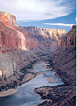 Grand Canyon National Park AZ Large Postcard lp0550 (Image1)