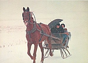 Amish Sleigh in Lancaster County lp0573 (Image1)