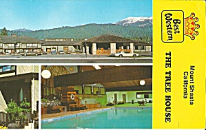 Mount Shasta CA Best Western The Tree House Motor Inn lp0784 (Image1)