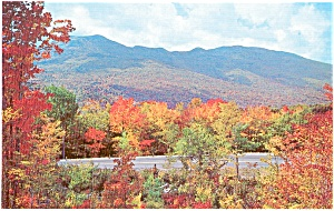 Kancamagus Highway NH Fall Color Postcard (Image1)