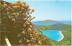 Magens Bay St Thomas Postcard (Image1)