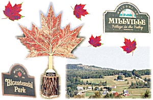 New Brunswick,Canada, Village of Millville Postcard (Image1)