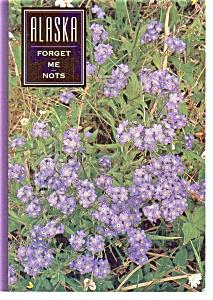Alaska Forget Me Nots Postcard (Image1)