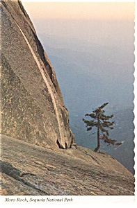 Moro Rock Sequoia National Park CA Postcard n0942 (Image1)
