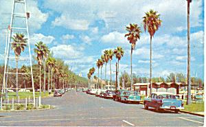 Bayshore Drive St Petersburg Florida  Postcard n1055 Cars 50s (Image1)