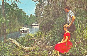 Weeki Wachee River  Florida  Postcard n1060 1971 (Image1)